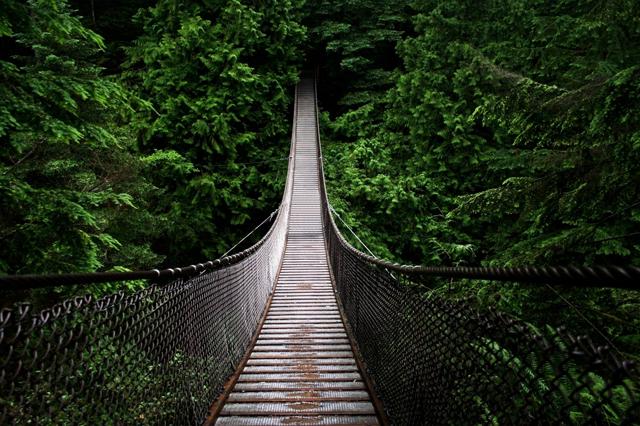 Cầu treeo Capilano ở Vancouver