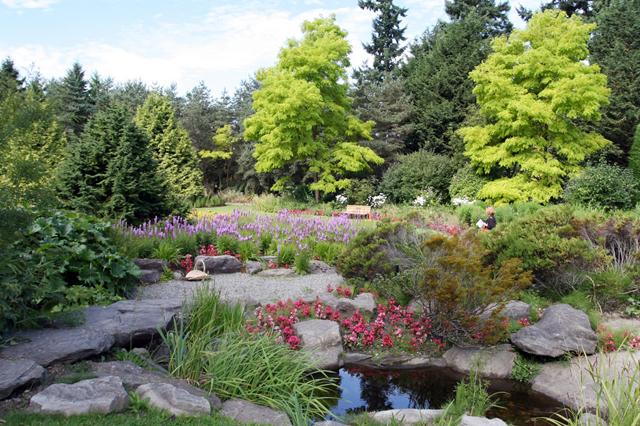 Một góc vườn Bách thảo VanDasen