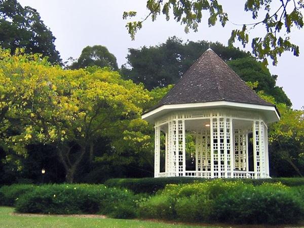 Phong cảnh thiên nhiên trong lành ở Botanic Garden (Vườn thực vật)
