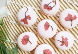 Độc đáo những món ăn làm từ hoa anh đào ở Nhật
