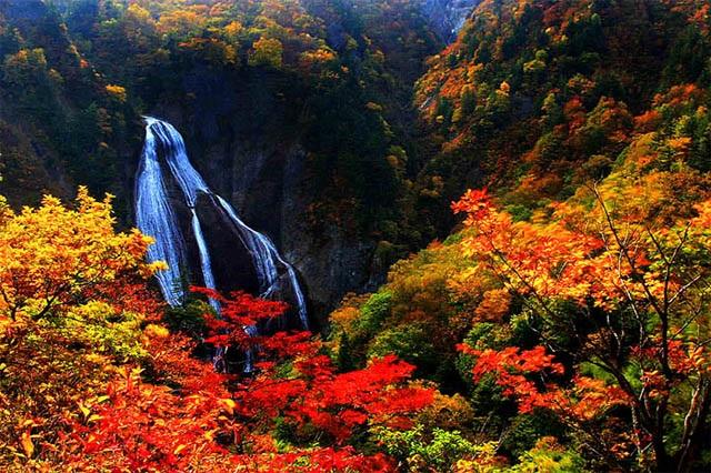 Cảnh sắc mùa thu mê hồn ở Nhật Bản
