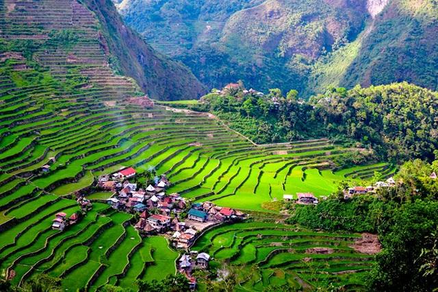 Những thửa ruộng bậc thang tuyệt đẹp ở Philippines