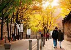 Thú vị con đường mà cặp đôi nào cũng sợ khi du lịch xứ Hàn