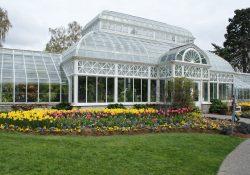 Volunteer Park Conservatory khu vườn thực vật đáng ghé thăm ở Seattle