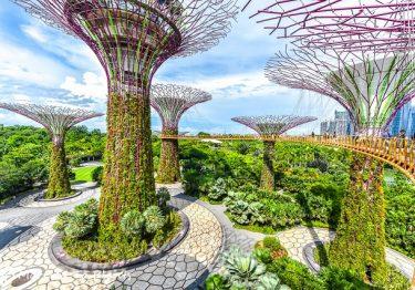 4 địa điểm không thể bỏ lỡ ở Singapore