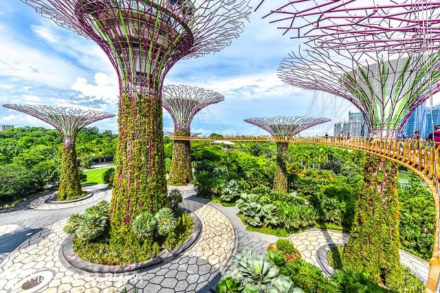 Gardens by the Bay là một công viên độc đáo nhất ở Singapore