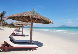 Nên tham quan những nơi nào vào dịp Tết tại Nha Trang?