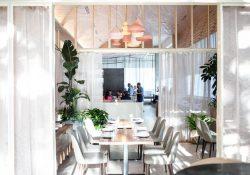 Top 3 nhà hàng ẩm thực nổi tiếng nhất ở thành phố Austin